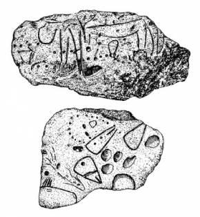 Орнамент на орудиях, обнаруженных в Ла-Ферраси