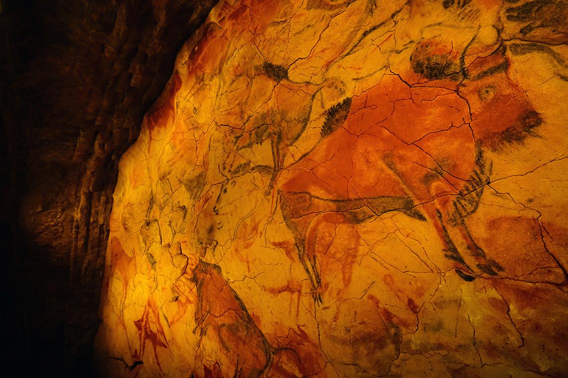 Наскальные изображения животных в пещере Альтамира