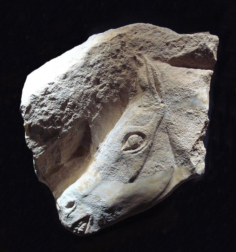 Голова лошади, Мадленская культура