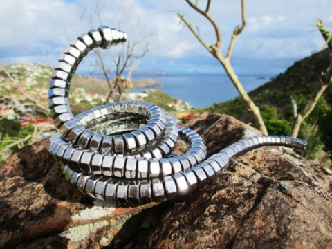 Жан Мартин, Змея