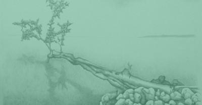 Звук падающего дерева в лесу – интересная философическая загадка