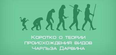 Коротко о теории происхождения видов Чарльза Дарвина