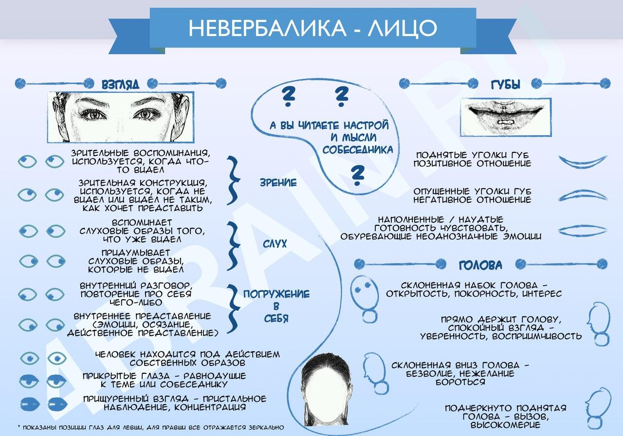 Инфографика — Невербалики лица