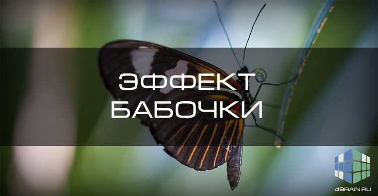 Эффект бабочки и его философский смысл
