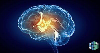 Нейробиология невербального общения