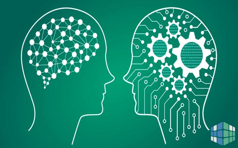 Фактор общего интеллекта