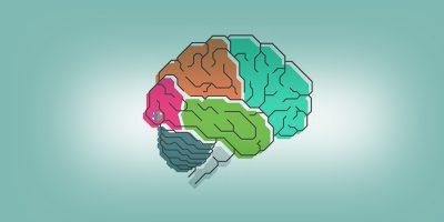 Интеллект и его развитие: несколько рекомендаций