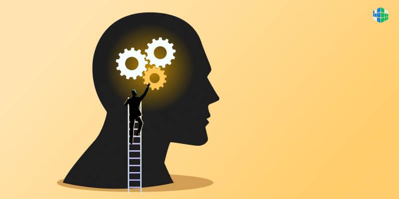 Когнитивное развитие. Часть 1