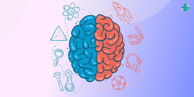 Интеллект: определение, развитие и деградация