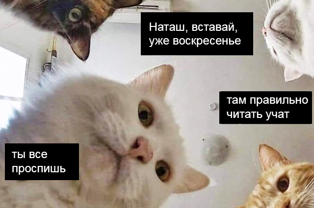 mask-mem