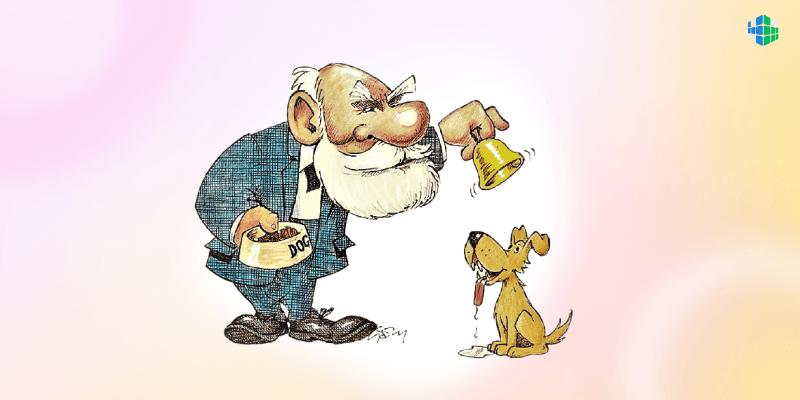 «Собака Павлова»: эксперимент длиною в жизнь